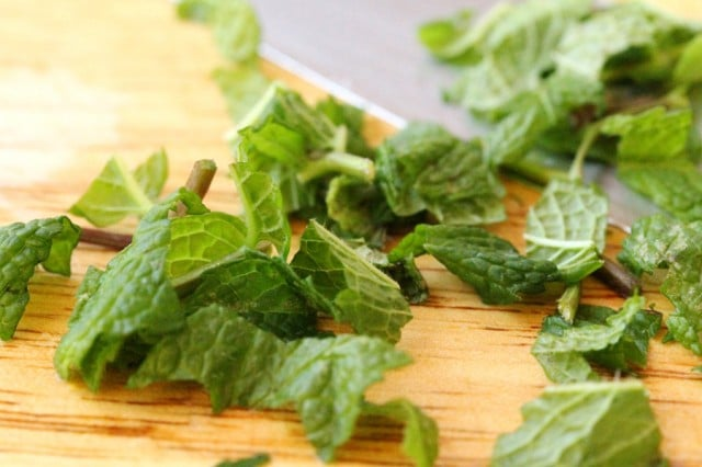 Cut Fresh Mint