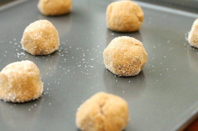 Molasses Cookie Dough Ball