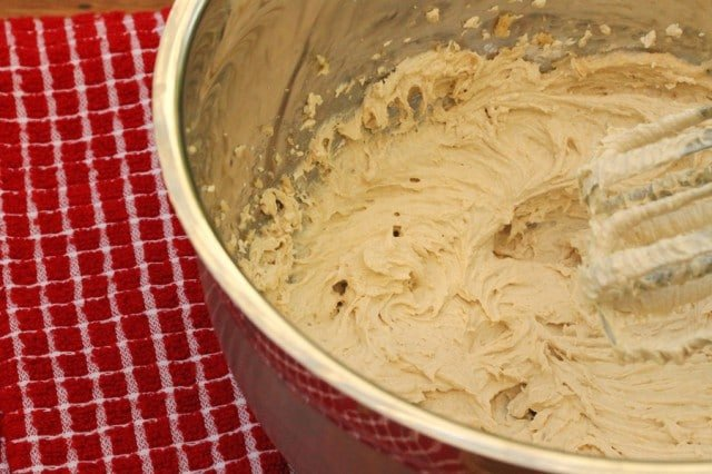 Molasses Cookie Dough