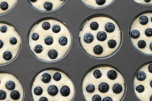 Blueberries in Pancake Batter