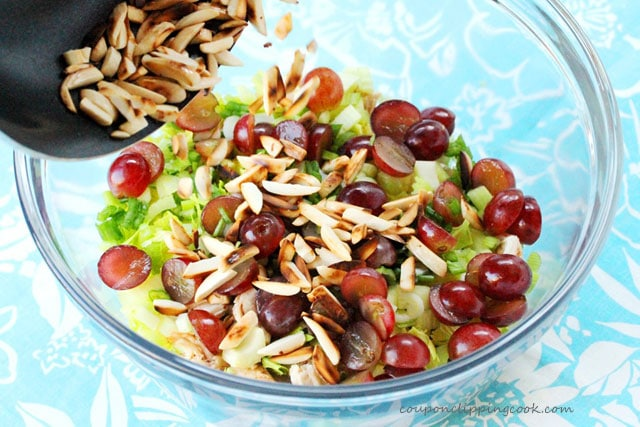 Toasted almonds and chicken salad in bowl