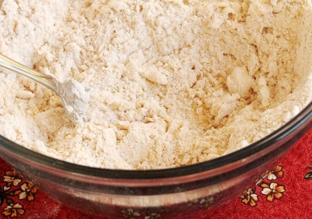 Mix flour and butter in bowl