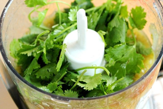 Cilantro in Food Processor