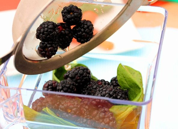 Add blackberries to blender pitcher