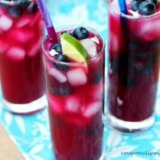 Blueberry Limeade with Ice