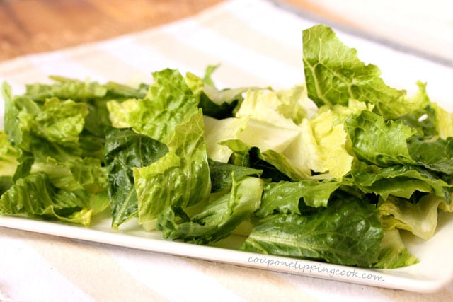 Cut pieces of Romaine lettuce on plate