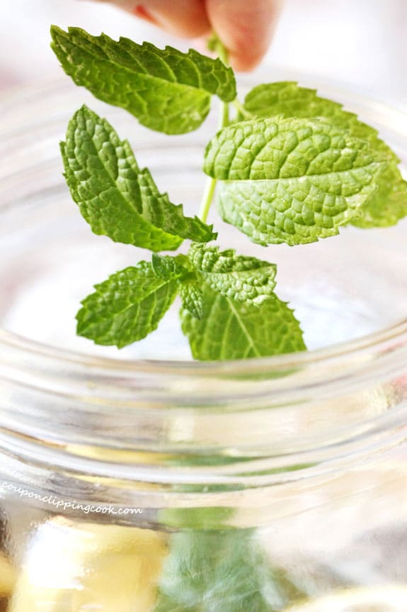 Add sprig of fresh mint to jar with tea