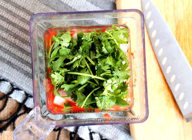 Cilantro in blender with cut tomatoes