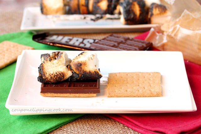 Toasted marshmallow, chocolate bar and graham crackers on plate