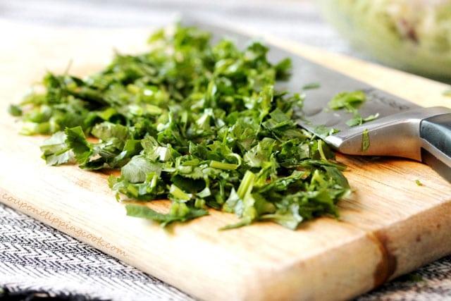 how to keep chopped cilantro fresh