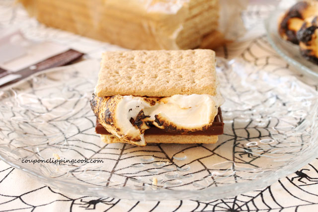 S'more with chocolate marshmallow on plate