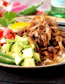 Crispy Shredded Pork Carnitas