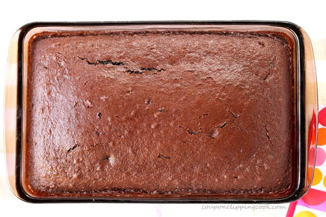 Baked chocolate cake in baking dish