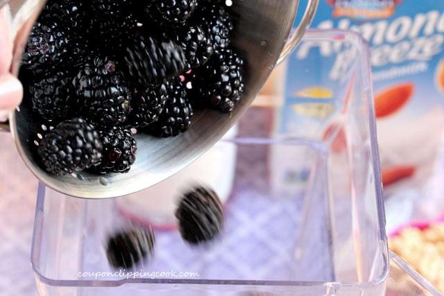 Add blackberries to blender jar