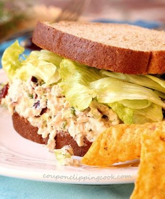 Tuna Salad with Cranberries and Dill