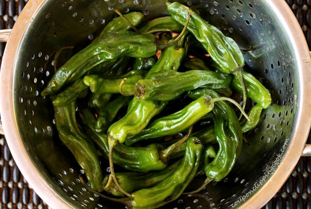 Shishito peppers in colander