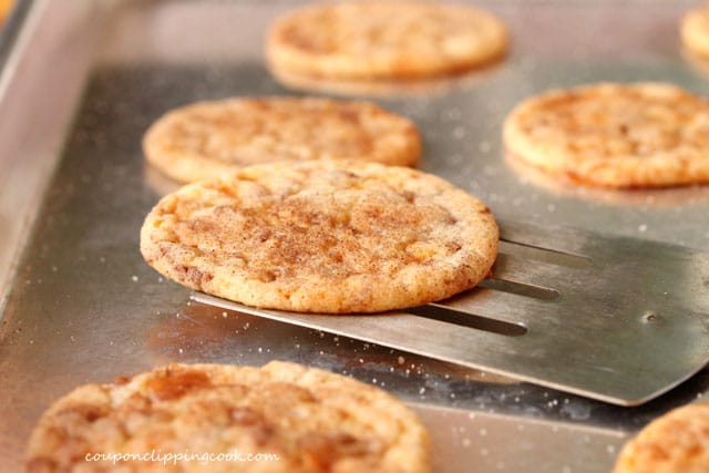 Snickerdoodle Cookie on Spatula